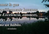 Somos lo que repetitivamente hacemos. La Excelencia, entonces, no es un acto, sino un hábito.